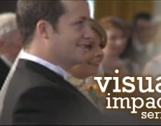 Visual Impact Series: Sample Curriculum for Groups