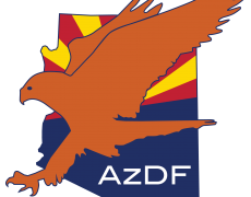Arizona Desert Falcon Logo